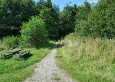 Path 1 - Daniel Hughes