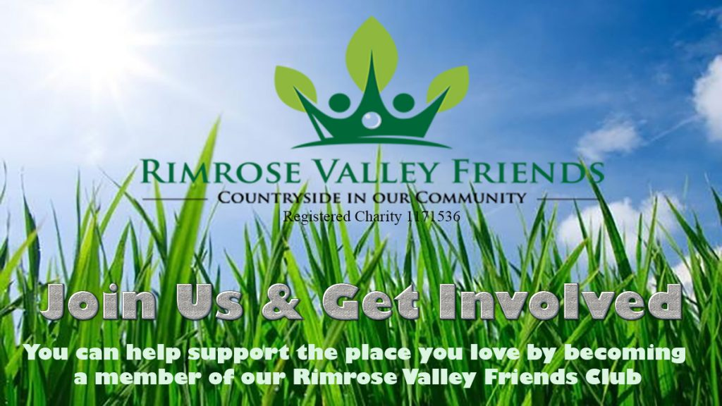 rvf grass club 4 big