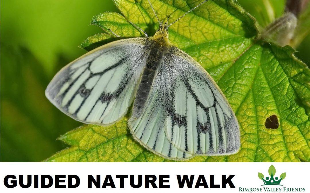 Guided Nature Walk: Sat 12th June at 9am