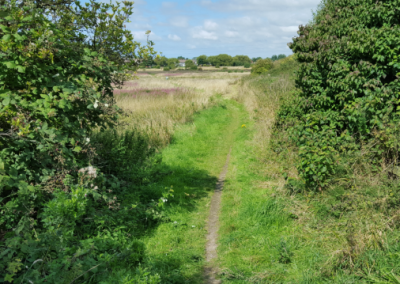 Path 4 - Daniel Hughes